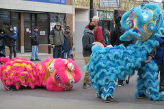 lunar new year on argyle 2017 (sassnasty) Tags: lunar new year 2017 rooster cock argyle chicago