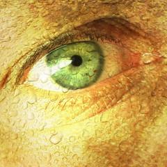 26/06/2009 (Day 3.177) - Green-Eyed Monster (Kaptain Kobold) Tags: iris light selfportrait macro green eye texture alan square gold droplets eyelash 365 pupil eyelid myfave selfie photoplus kaptainkobold 365days yourfave 365friday 365more selfiesquared 365year3 3650609 day3177