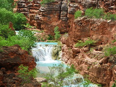 Upper Beaver Falls from trail - Grand Canyon (Al_HikesAZ) Tags: alhikesaz arizona grandcanyon nationalpark gc2009 azra arizonaraftadventures upperbeaverfalls beaverfalls hike hiking grand canyon rafting trip belowtherim inthecanyon havasucreek havasu creek coloradoriver river water blue aquamarine senderismo descubrimiento waterfall grandcanyonnationalpark gcnp     national park paisaje beaver falls