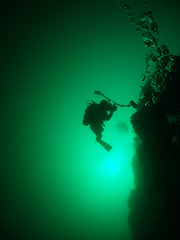 The-pinnacle-from-25metres (damoj5) Tags: diving thepinnacle kilkee inon fujif40 inon165degreelens