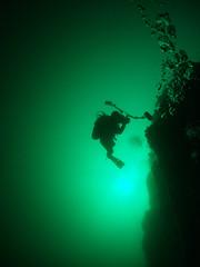 The-pinnacle-from-25metres (damoj5) Tags: diving thepinnacle kilkee inon fujif40 inon165degreelens
