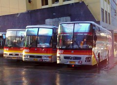 Arrange the Following MEN: =p (Api II =)) Tags: man bus del star victory lions monte sr liner modulo kamias cvl 1660 1616 7007 18310 18280 exfoh