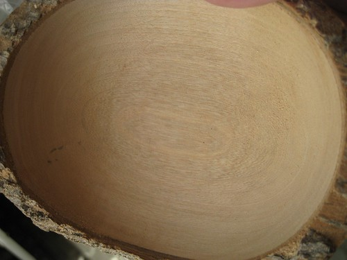 Jacaranda natural edge bowl