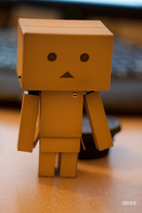 IMG_0001 () Tags: cute canon project toy figure 365 lovely pvc  japanesetoy 500d danbo  canon500d   danboard   t1i canont1i   500d t1i