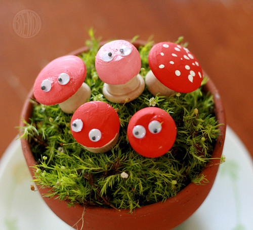 toadstool family