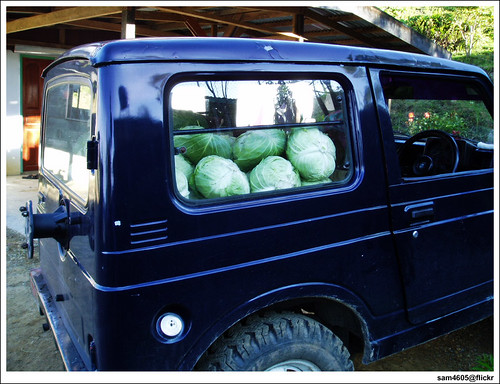 Suzuki Jimny SJ410 4x4 4WD loaded with Cabbages
