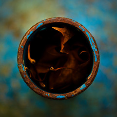 Autumn in a metal pipe (Rune T) Tags: blue autumn leaves metal circle season square focus warm dof close bokeh pipe changing round topdown