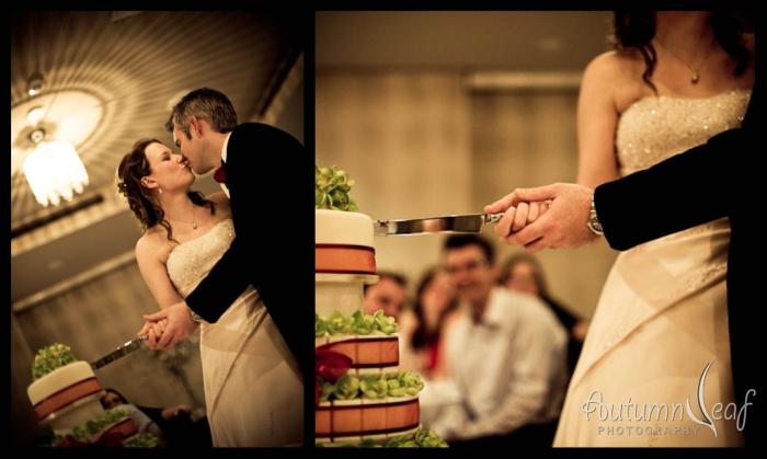 Courtney & Glen - Cake Cutting