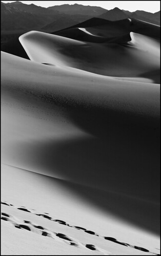 Sand Dune Vista