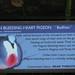 Luzon Bleeding Heart Pigeon