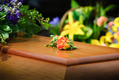 Roy's Funeral