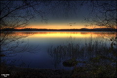 Lake of Menteith (CU-Photography) Tags: trees sunset sun lake silhouette reeds scotland bravo craig usher menteith trossachs hdr anawesomeshot