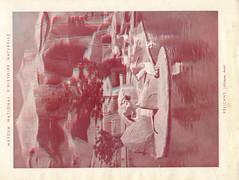 zoorelief p6