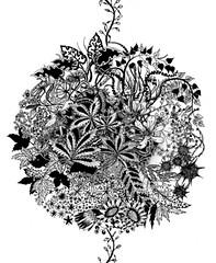 Johanna Basford on Ape on the Moon (moonape) Tags: floral fauna drawings interview inkart basford floralart digitalillustration inkillustration contemporaryillustration johannabasford apeonthemoon moonape