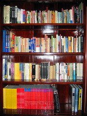 god i miss them (Xuan Che) Tags: china city home magazine beijing july books 2006 bookshelf shelf geo canonixus400