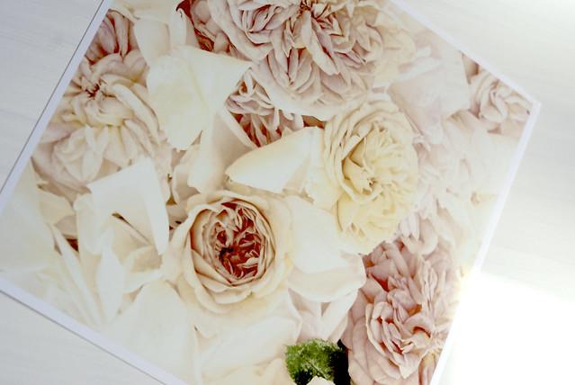::post delights:: Trisha Brink Design