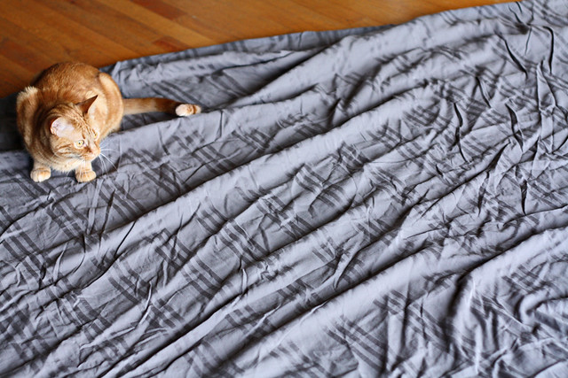 03 Duvet fabric charcoal striped