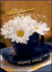 68_feliz semana