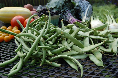 Two types of green beans