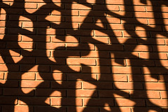 Shadow Writing