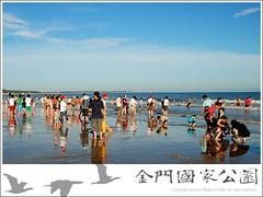 夏日海濱遊人如織