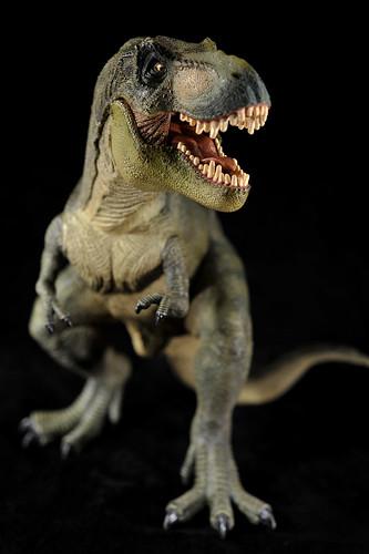Papo - Tyrannosaurus rex (12)