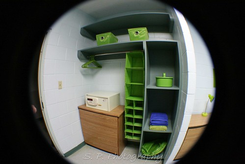 Lime Green room
