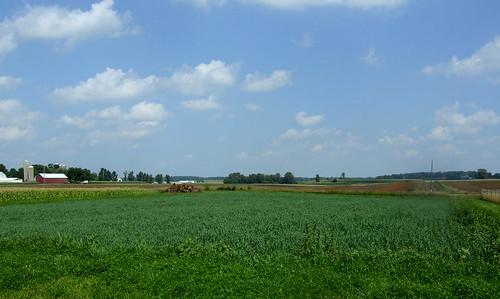 field2-2