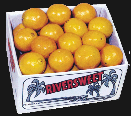 4-25-navel-oranges by you.