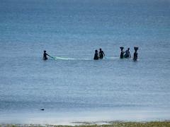 A Pesca / Fishing (Gagum) Tags: praia traveling viagens pesca moambique pemba frica praiadewimbe