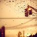 Que pare de llover par Alfon...*