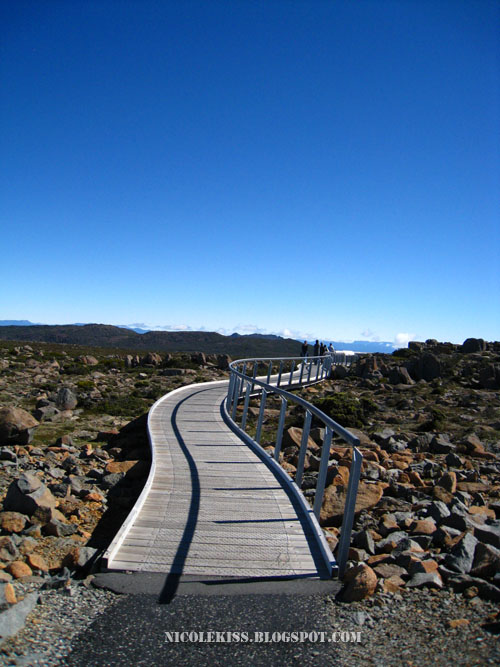 walkway on mount wellington