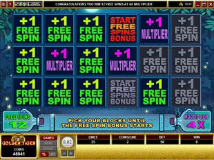 free Moonshine gamble bonus game