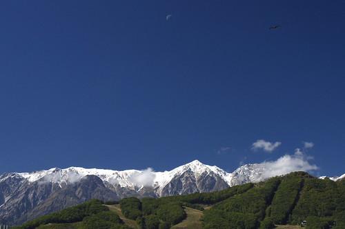 200910126390冠雪