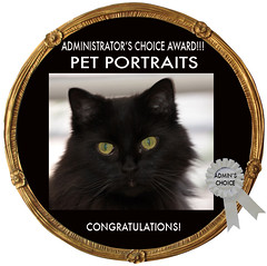 Amended PET PORTRAITS AMIN CHOICE AWARD CODE