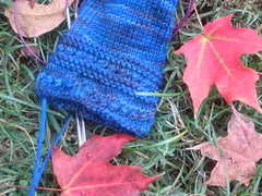 Fall Reading Mitts