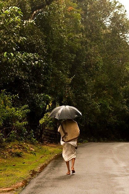 Chitra Aiyer - Rain or Shine ..