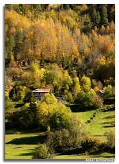 Kure Mountains - Senpazar Town 4