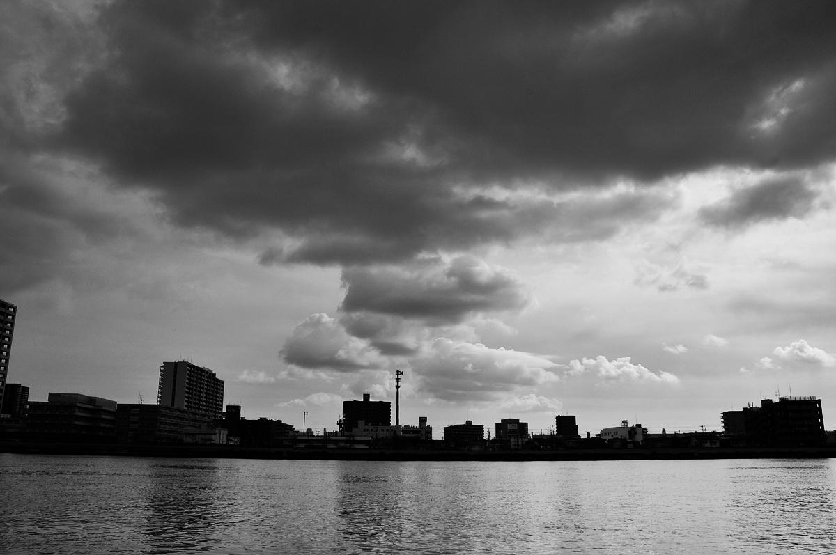 2009-11-29 言っておくことがある  河口付近の信濃川