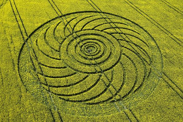 Crop-circles-A-crop-circl-006