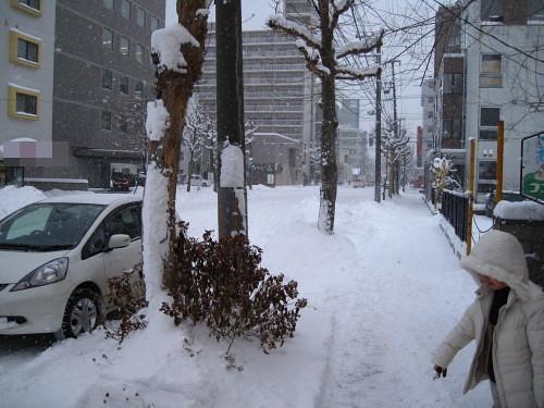 雪 (1).JPG
