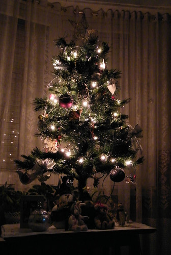 Our Tree at Night by katiemetz, on Flickr