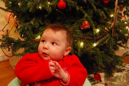Savannah, Christmas 2009