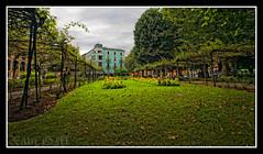 Aviles-09 (Xavi GM) Tags: parque españa flores verde green valencia canon spain arboles asturias aviles 5d 1001nights totalphoto xavigm