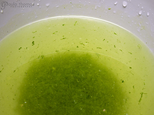Lime Zest Water