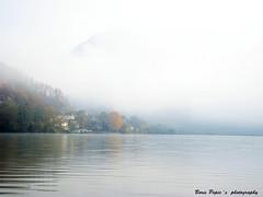 Upravo probudjeni ( Amajic ) - Just awakened (Amajić ) (Boris Humanitas Pepic) Tags: lake lakescape morning fog malizvornik serbia amajic jezero jutro magla dream san borderline granica
