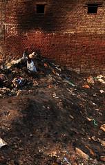 Street Scene (2) (Nikole Bouchard) Tags: india brick train landscape delhi housing benares lpdamaged
