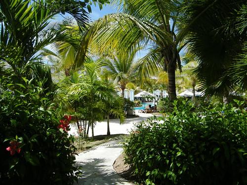 Pool (one of the half-dozen on the resort)