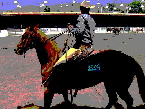 Fiesta Cowboy 652