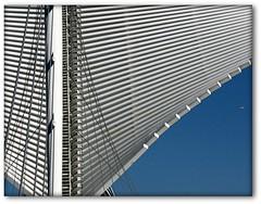 Calatrava (L. Felipe Castro) Tags: santiago copyright art museum wisconsin architecture photographer calatrava milwaukee fotografo mke reservado luizcastro luizfelipecastro luizfelipedasilvadecastro